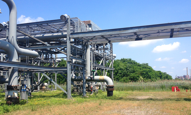 RINs Verification Engineering Review Report for Fresh Kills Landfill